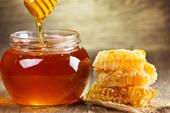 تولید و فروش عسل در طالقان