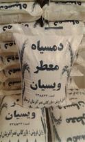 پخش باکیفیت ترین برنج دمسیاه ایرانی