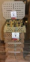 فروش اردک زنده محلی ( ارگانیک ) بالغ و جوجه اردک