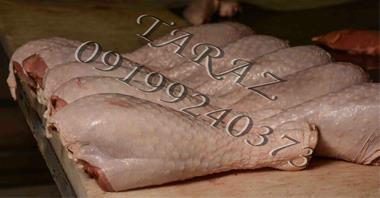 فروش عمده گوشت بوقلمون وقطعه بندی بوقلمون - 1