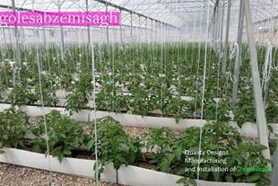 ساخت گلخانه-گلخانه ساز گلستان-گلخانه
