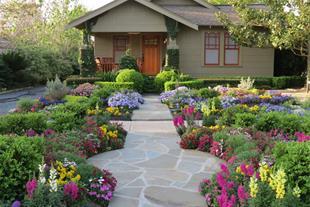 تهیه و فروش انواع گل های بیرونی ، آپارتمانی و درخت