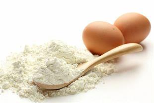طرح توجیهی تولید پودر و مایع پاستوریزه تخم مرغ