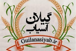 فروشگاه اینترنتی گیلان آسیاب