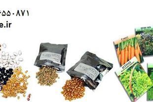 انواع بذر سبزی و صیفی جات و بذر گوجه و بادمجان