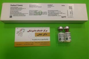 واکسن آبله قناری