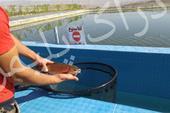 ساخت استخر پلیمری در فارس - استخر ذخیره آب