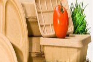 طرح توجیهی تولید ظروف گیاهی تجزیه پذیر