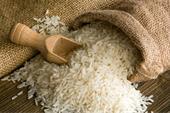 فروش برنج طارم هاشمی مازندران