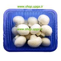 فروش بذر قارچ دکمه ای در همه شهرها برای پرورش قارچ