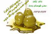 فروش مستقیم روغن زیتون رودبار اصل و فرابکر-بابو
