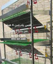 فروش قفس بلدرچین با آبخوری و تخلیه کود اتوماتیک