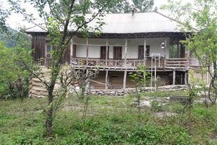 اجاره کلبه جنگلی درلفور - سوادکوه شیرگاه