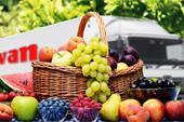 شرکت صادرات میوه و گوشت و خشکبار به ترکیه و عراق