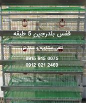فروش قفس بلدرچین 5 طبقه جنس گالوانیزه گرم