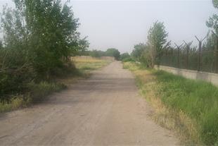 فروش 3100 متر باغ در کیلومتر 16 جاده قدیم کرج
