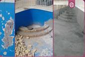 آب بندی استخر و بام بدون تخریب سطح
