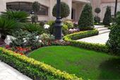 طراحی فضای سبز - اجرای فضای سبز - محوطه سازی