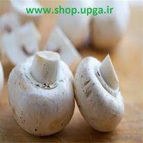 خرید بذر قارچ دکمه ای با سفارش تلفنی