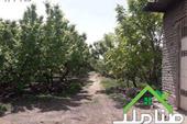 خرید و فروش باغ در یبارک شهریار کد1349