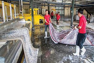 سالن دستگاه قالیشویی