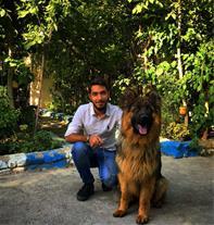 فروش ویژه سگ ژرمن کینگ