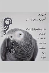 خدمات دامپزشکی - درمان پرندگان زینتی - 1