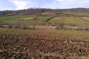 فروش زمین در روستا اقمشهد ساری