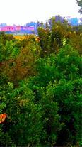 ویلا باغ 18000متری با کلیه انشعابات و مدارک کامل