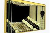 گاوصندوق آسانسوری فوق ایمن و زیبا | گاوصندوق آرکا