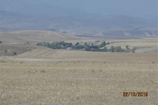 فروش زمین کشاورزی 1800 هکتاری فروشی