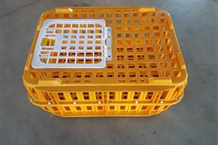 قفس حمل مرغ زنده - قیمت جعبه حمل مرغ زنده