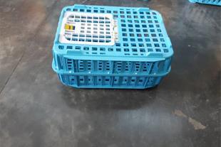قفس حمل مرغ زنده و بلدرچین قیمت جعبه حمل مرغ زنده