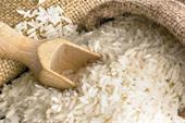 عمده فروش و تامین برنج عالی مازندران