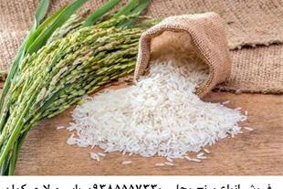 فروش انواع برنج درجه یک تضمینی