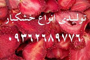 تولید انحصاری توت فرنگی خشک شده