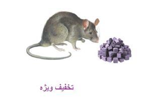 فروش سم موش کش بنیرات_فروش زیر قیمت بازار