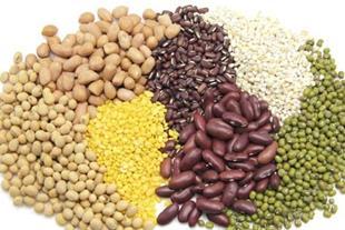 آمادگی صادرات انواع خشکبار و حبوبات
