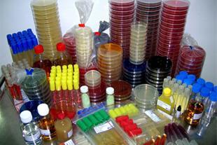 فروش ملزومات آزمایشگاهی