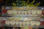 دندان نچرال دنت