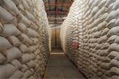 سمپاشی وضد عفونی انبارها  کارخانجات سیلوها با مجوز