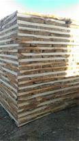 فروش بهترین چوبهای پالتی