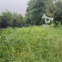 فروش زمین 310 متری در رامسر نرسیده به تله کابین