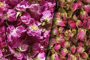 فروش عمده پر گل محمد ، گل محمدی