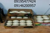 فروش ویژه تخم نطفه دار شتر مرغ و دستگاه پرکن صنعتی