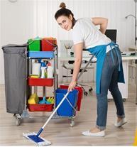 شرکت نظافتی تلاش پاکان