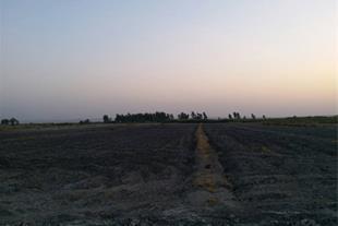 فروش نقد و اقساط و یا اجاره زمین کشاورزی 42 هکتاری