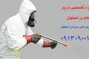 خدمات سمپاشی حشرات موذی در استان اصفهان