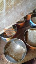 فروش عمده بهترین سوغات استان اردبیل(عسل،حلواسیاه)