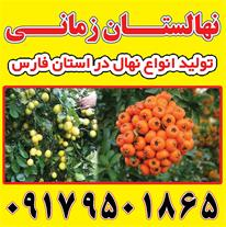 انواع نهال در نهالستان مهندس زمانی در شیراز